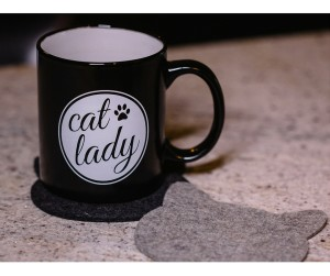 Cat Lady Mug And Coaster