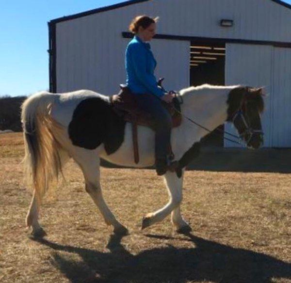 riding-gamibt