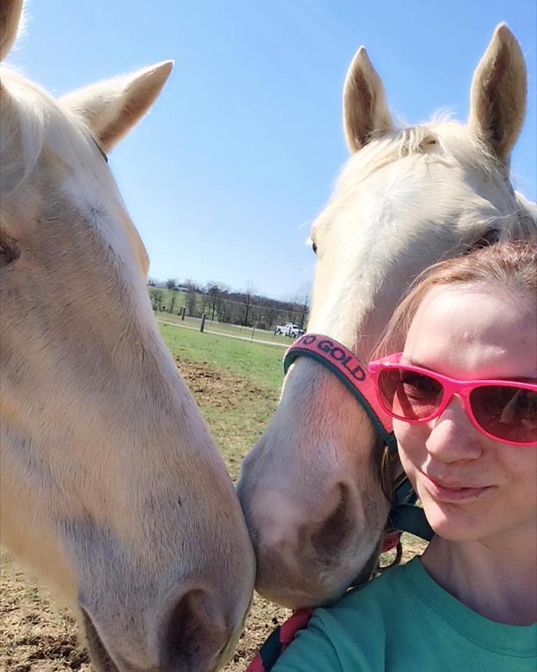 champagne Saddlebred mares