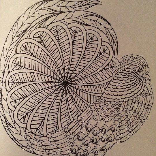 bird-coloring-mandalas