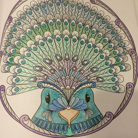 colored-bird-mandala