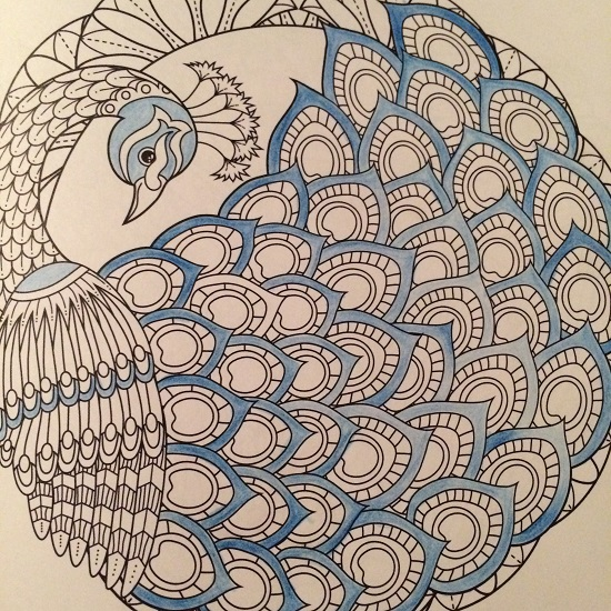 coloring-bird-mandala-blue