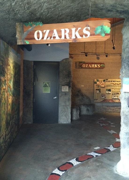 ozarks-snakes