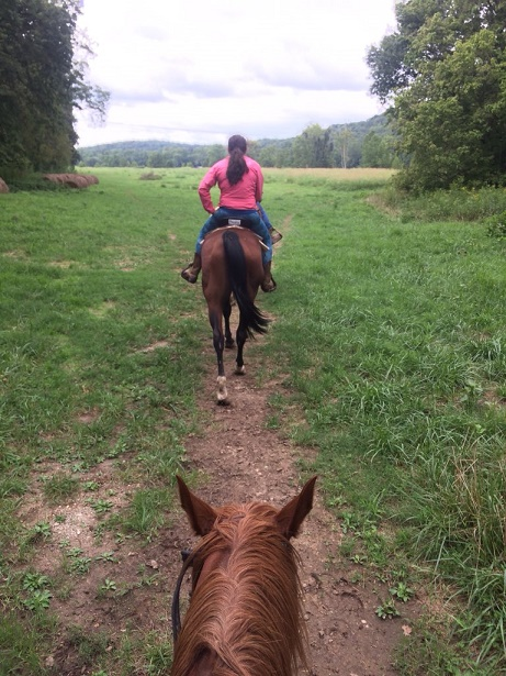 As You Probably Know If You Read My Friday Posts I Started Taking English Riding Lessons Last November I Still Love It Although I Havent Had The Time Or