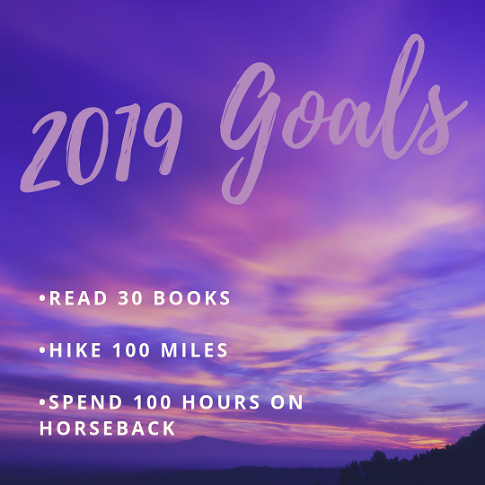 2019 goals new year